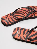 Взуття жіноче ANIMALI_5